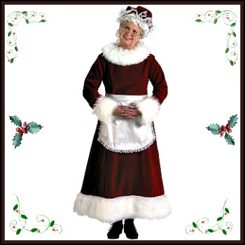 Adult Mrs Claus Costumes And Accessories Deluxe Theatrical